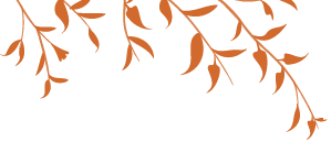 Le microorganisme végétal de longle 3 stade